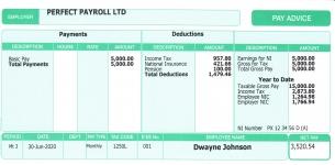 Standard Payslip -sl01