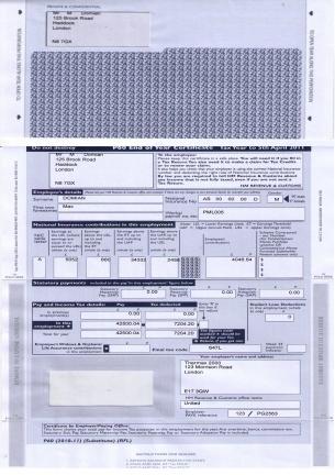 Sagp60-2010-11(mailer)