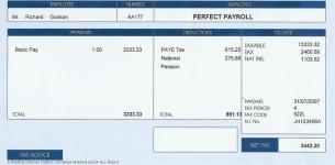 Standard Payslip-sl11