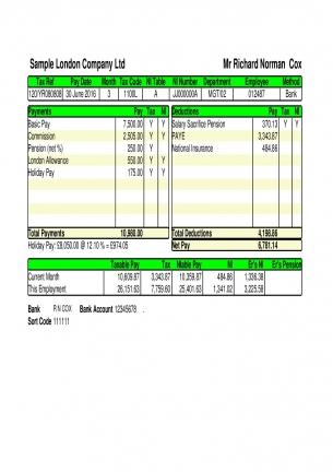 E-payslip A5-green